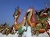 Die eingewanderten Chinesen markieren gerne ihr Territorium
