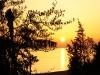 Abendsonne vom feinsten