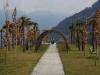 Vor Merano: erste Palmen gesichtet!