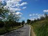...durch blühende Landschaften...