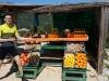 Wir haben jetzt auch Früchte und Eingemachtes im Angebot