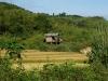 Wo sich Reisfelder an naturbelassene Urwaldhügel schmiegen