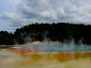 Das Thermalgebiet Rotorua ist bekannt für seine Geysire...