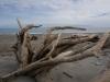 Dank den lästigen Sand Flies kommt nie wirklich Badestimmung auf