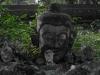 Herr Buddha und seine drei Vasallen