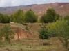 Rote Felsen, goldgelb gefärbte Bäume: Wir erleben einen herrlichen Herbst
