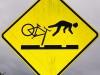 Kein Wunder, fliegt dieser Radfahrer so leicht vom Velo - er hat ja auch keine Hände und Füsse!