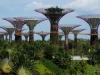 Gleich dahinter erstrecken sich die lauschigen Gardens by the Bay mit ihren futuristischen Supertrees