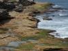 ...Buchten und Pärke bis nach Coogee Bay