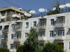 Urban Farming: Die Spezies Satellita Antennae gedeiht auf den Dachgärten Duschanbes besonders gut!
