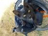 Ein ausgehungerter blinder Passagier (eine sogenannte Mimikri-Katze; zur perfekten Täuschung hat sie die Farbe unserer Taschen angenommen!)