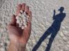 Salzkristalle in allen Grössen